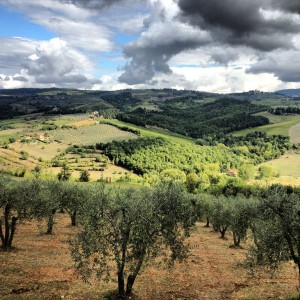 The classic beauty of the Tuscan landscape that attracts thousands of tourists a year